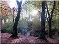 SD7011 : Footbridge in Raveden Wood by Philip Platt