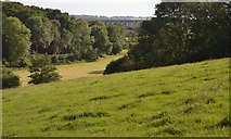 TQ3328 : View towards the Ouse Valley Viaduct by N Chadwick
