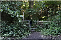 TQ3326 : HWLT of Copyhold Lane by N Chadwick