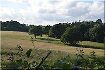 TQ3326 : Farmland and trees by N Chadwick