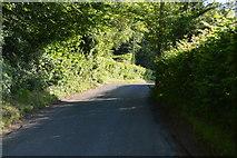 TQ3226 : Copyhold Lane by N Chadwick
