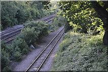 TQ3226 : Branch off Brighton Main Line by N Chadwick