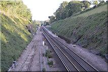 TQ3226 : Brighton Main Line by N Chadwick