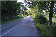 TQ3226 : Bordenhill Lane by N Chadwick