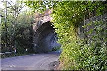 TQ3227 : Skew Bridge by N Chadwick