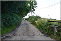 TQ3227 : Track off Bordenhill Lane by N Chadwick