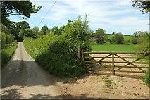 SS2200 : Lane to Burracott by Derek Harper