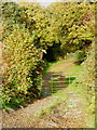 SX2678 : The track and bridleway leading to Lemalla by Rod Allday