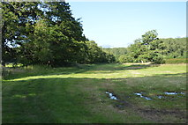 TQ3227 : Sussex Ouse Valley Walk by N Chadwick