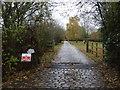 SJ4764 : Road to Guy Lane Farm by JThomas