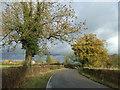 SJ5952 : Nantwich Road, Gradeley Green by JThomas