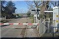 TL3948 : Barrington Rd by N Chadwick
