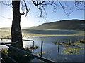 H4985 : Icy pond, Gortin : Week 47
