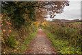 SX0771 : Camel Trail by Guy Wareham