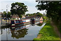 SO8698 : Narrowboats moored along the Staffordshire and Worcestershire Canal by Mat Fascione
