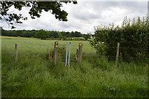 TQ5347 : Footpath and stile near Leigh Park Farm by N Chadwick