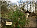 SW9945 : Lost Gardens of Heligan: Insect Hotel by Jonathan Hutchins