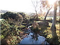 J1521 : Almost ten years on and the fallen tree still bridges the Aghavilly stream by Eric Jones