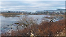 NH5346 : View to Beauly along the River Beauly by Julian Paren