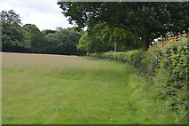 TQ5246 : Field boundary by N Chadwick