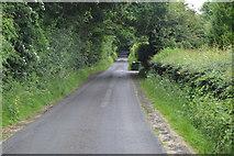 TQ5346 : Cinder Hill Lane by N Chadwick