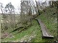 NS5826 : River Ayr Way, Castle Hill by Richard Webb