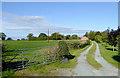 SJ5847 : Farm driveway near Wrenbury in Cheshire by Roger  Kidd