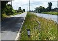 TL4998 : B1098 Sixteen Foot Bank by Mat Fascione