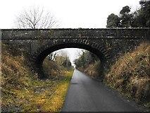 N3649 : Bridge on the Athlone to Mullingar Cycleway in Stokestown, Co. Westmeath by JP