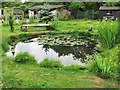 TQ7710 : Pond at 24 Crowhurst Road by Patrick Roper