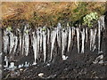 NY8040 : Icicles on the peat haggs : Week 1