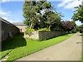NZ0551 : Walled  garden at Black Hedley by Robert Graham