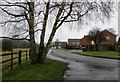 SP5396 : Sycamore Road in Littlethorpe by Mat Fascione