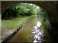 SJ6048 : Llangollen canal near Wrenbury Heath, Cheshire by Roger  Kidd