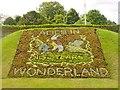SU9949 : Alice in Wonderland by Colin Smith