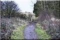 NZ2973 : Footpath on old Backworth Waggonway on North Tyneside/Northumberland boundary by Ron Dixon