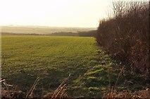 SW9072 : Field, Highlanes by Derek Harper