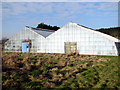 TG2809 : Modern greenhouses by Evelyn Simak
