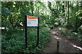 ST7966 : Path into Brown's Folly Nature Reserve by Bill Boaden