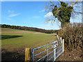 SU8690 : North of Winchbottom Farm by Des Blenkinsopp