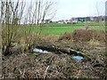SE3901 : Elsecar branch, Dearne & Dove Canal, below Storey Lock by Christine Johnstone