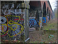 SK5702 : Graffiti on the Twelve Arches Railway Bridge : Week 7