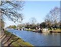 SJ7891 : Bridgewater Canal by Gerald England