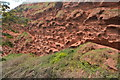 SX9675 : Red Sandstone Cliff by N Chadwick