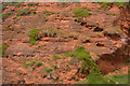 SX9677 : Red Sandstone Cliff by N Chadwick