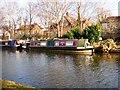 SJ7891 : Lerrite on the Bridgewater Canal by Gerald England