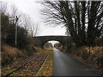 N3346 : Bridge & Disused Signal on the Athlone to Mullingar Cycleway by JP