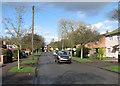 TL4756 : Wulfstan Way in March by John Sutton