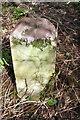 SP9028 : Boundary stone on SW side of Bragenham Lane by Roger Templeman