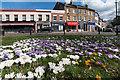 TQ3194 : Winchmore Hill Green, London N21 by Christine Matthews